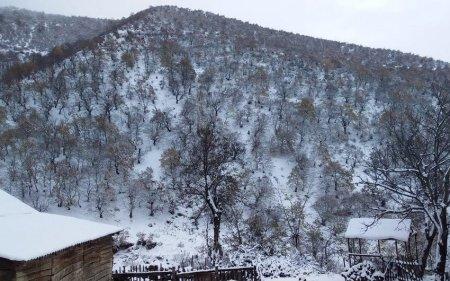 Şahdağda qar yağıb - Faktiki hava