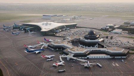 Aeroportda heyvanlara qəddar davranışla bağlı araşdırma başlanıldı