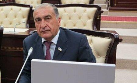 """Deputat: """"Jirinovski saray təlxəyi kimi siyasi klounluqla məşğuldur"""""""